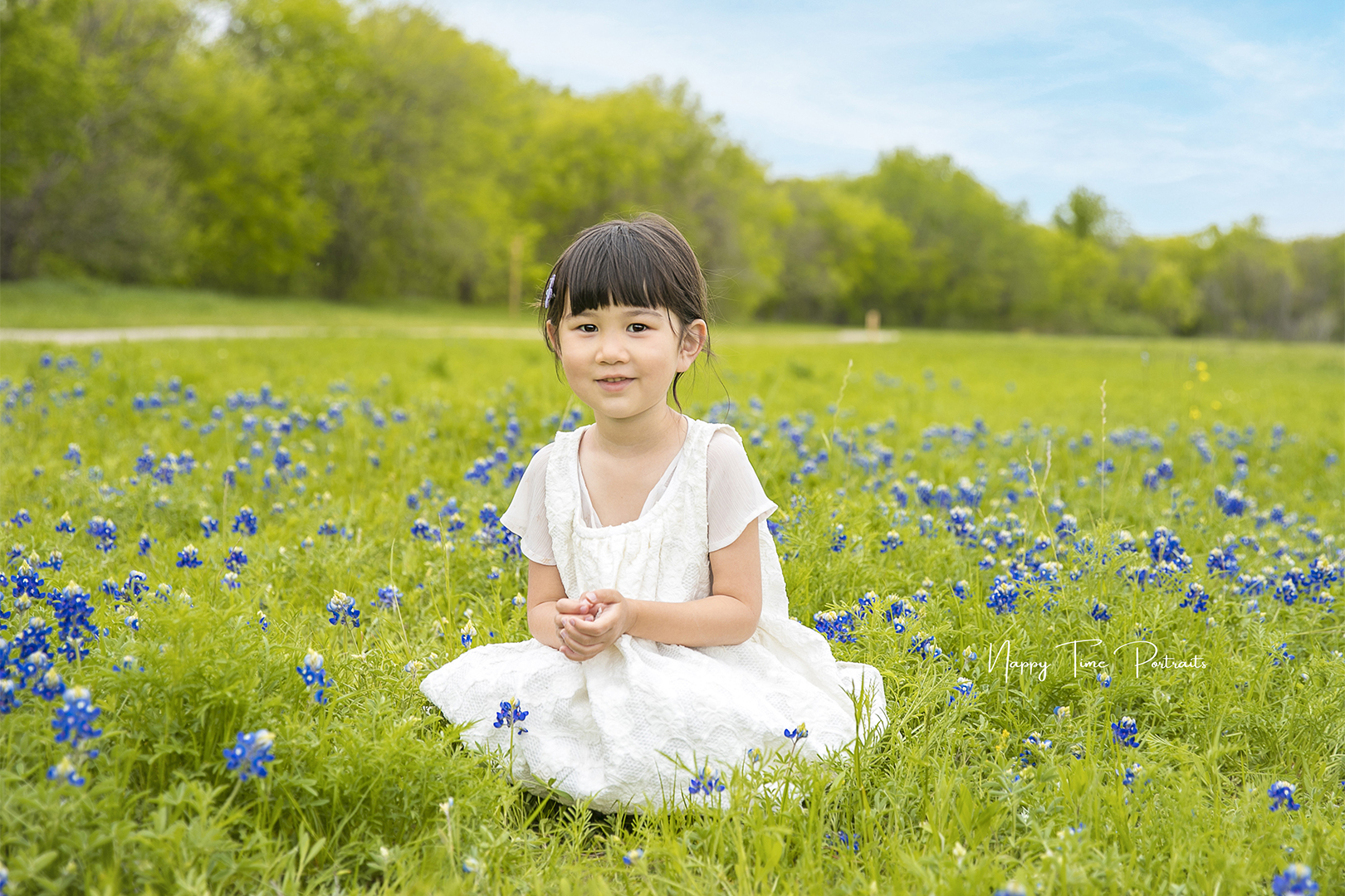 Bluebonnets Photos
